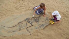 Archeologiczna ekskawacja dinosaur kości zbiory
