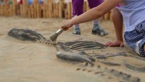 Archeologiczna ekskawacja dinosaur kości zdjęcie wideo