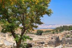 Archeologiczne ruiny Beit Ona ` lokalizować w Izrael obraz royalty free