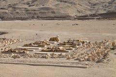 archeologiczni znaleziska Zdjęcia Royalty Free