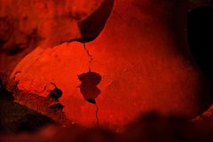 Archeologii podkopowy miejsce Istni artefakty, stara amfora fotografia stock