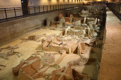 Archeologisch museum royalty-vrije stock afbeeldingen