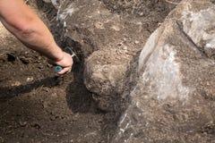 Archeologisch onderzoek royalty-vrije stock afbeeldingen