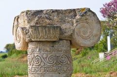 Archeologisch Park. Metaponto. Basilicata. Italië. stock foto