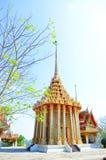 Archeologische plaats van Dharma Stock Foto's