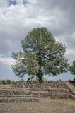 Archeologische ruïnes in Mexico Royalty-vrije Stock Foto