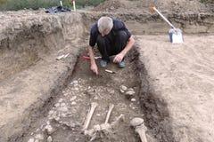 Archeologische Uitgraving De archeoloog in een graafproces, die het graf, de menselijke beenderen, het deel van skelet en de sche stock fotografie