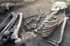 Archeologische uitgravingen en vondstenbeenderen van een skelet in een menselijke begrafenis, een detail van oud onderzoek, voorg stock foto