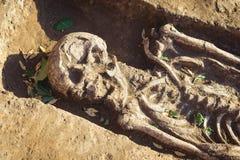 Archeologische uitgravingen onderzoek naar menselijke begrafenis, skelet, schedel stock foto's
