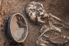 Archeologische uitgravingen onderzoek naar menselijke begrafenis, skelet, schedel, inventaris royalty-vrije stock fotografie