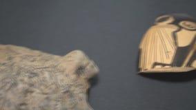 Archeologische vondsten in het museum stock footage