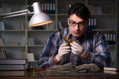 Archeologist pracować nocny w biurze Obrazy Royalty Free