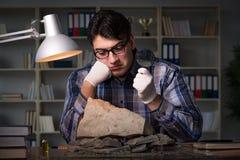Archeologist pracować nocny w biurze Obraz Stock