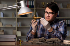 Archeologist pracować nocny w biurze Zdjęcia Royalty Free