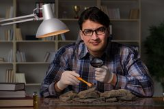 The archeologist working late night in office. Archeologist working late night in office Royalty Free Stock Image