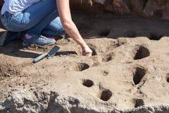 archeology Arqueólogo que trabalha no local arqueológico imagem de stock