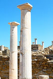 Archeology  in delos. In delos   greece    the historycal acropolis and         old ruin site Stock Photography