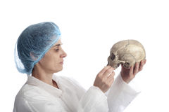 Archeology female researcher analysing a skull. Isolated on white background Royalty Free Stock Photos
