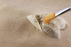 Archeology and forensics bones in sand. With brush Stock Photo