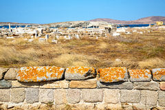 Archeology  in   the historycal acropolis  old ruin. In delos   greece    the historycal acropolis and         old ruin site Stock Photos