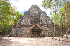 Archeology and nature of the Yukatan peninsula. Coba , Mexico, archaeological site, the Xay Be pyramid Royalty Free Stock Photography