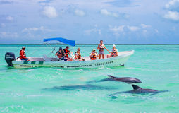Archeology and nature of the Yukatan peninsula royalty free stock photo