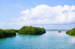 Archeology and nature of the Yukatan peninsula stock photography