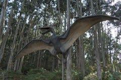 archeopteryx Fotografie Stock