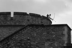 archer fotografie stock
