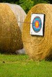 Archers de la blanco Imágenes de archivo libres de regalías