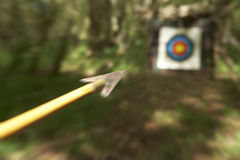 ARCHERY ARROW AIMING AT TARGET IN WOODLAND Royalty Free Stock Photo