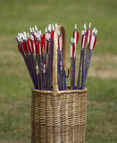 Archery arrows Royalty Free Stock Photo