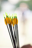 Archery with arrows Royalty Free Stock Photo