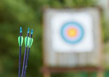 Archery equipment - arrows Stock Photography