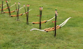 Archery Sport. Royalty Free Stock Photos