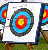 Archery Target. Royalty Free Stock Image