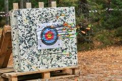 Archery  target Royalty Free Stock Photo