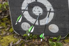 An archery target with arrows in it royalty free stock photo
