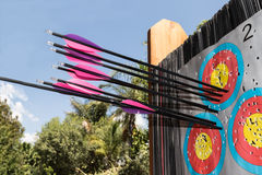 Archery target with arrows Royalty Free Stock Images