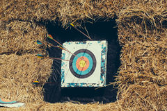 Archery target with arrows Royalty Free Stock Photo