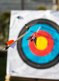 Archery target with arrows. Stock Photography