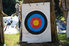 Archery target full with arrows. Royalty Free Stock Images