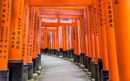 Arches of Inari Shrine Royalty Free Stock Photos