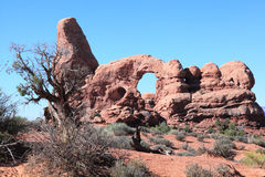 Arches National Park. Distance view to see Turret Arch in the Wintows Section stock images
