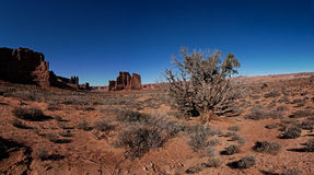 Arches National Park Panorama Royalty Free Stock Images