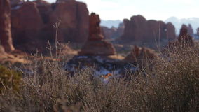 Arches National Park 03. Rack focus from some bushes in the foreground to overlook a beautiful vista with natural rock formations in the background. Shot at stock video