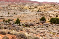 Arches National Park, Rocks Red Desert Mountain Landscape. Red Rocks and Pine Trees at Arches National Park, Moab, Utah, Landscape with Blue Sky royalty free stock photo
