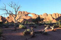 Arches National Park. Skyline Arch at dusk in Arches National Park stock image