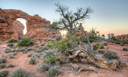 Arches National Park. Is a US National Park in eastern Utah windows area of the park Royalty Free Stock Image