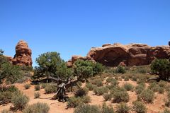 Arches National Park. In USA Stock Photos
